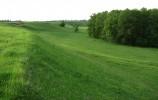 Zawieszona Dolina Gaciska niedaleko asfaltu Malesowizna - Kruszki