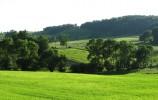 Łąki wsi Wodziłki