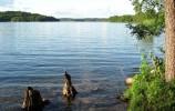 Jezioro Hańcza od strony wsi Bachanowo