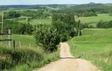 Stromy zjazd niebieskim szlakiem w kierunku wsi Wodziłki