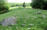 Rezerwat Głazowisko Bachanowo