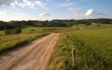 Droga Udziejek-Wodziłki biegnie samym środkiem Zagłębienia Szeszupy