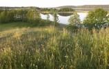 Jezioro Wigry, zatoka Cieszkinajki - widok od strony Mikołajewa